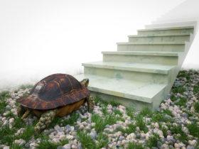 small steady steps